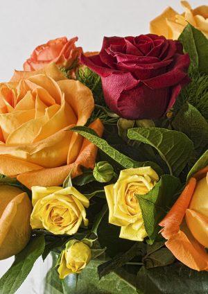 De mooiste bloemen versturen